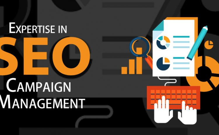 Running an SEO Campaign