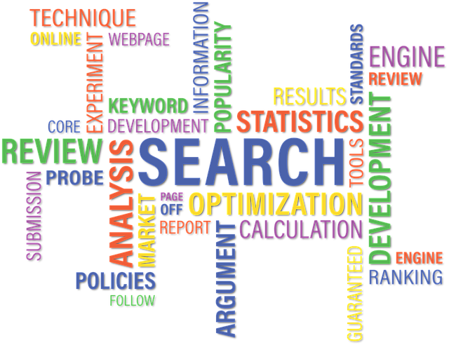 Search Engine Features