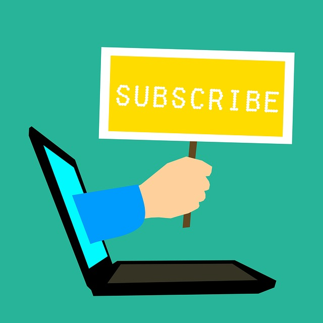 Do you want to increase number of subscribers to make the most from your blogging efforts?